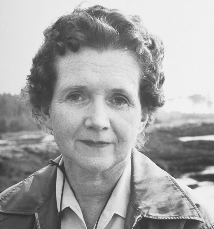 Rachel Carson; zdjęcie: Alfred Eisenstaedt/The LIFE Picture Collection/Getty Images