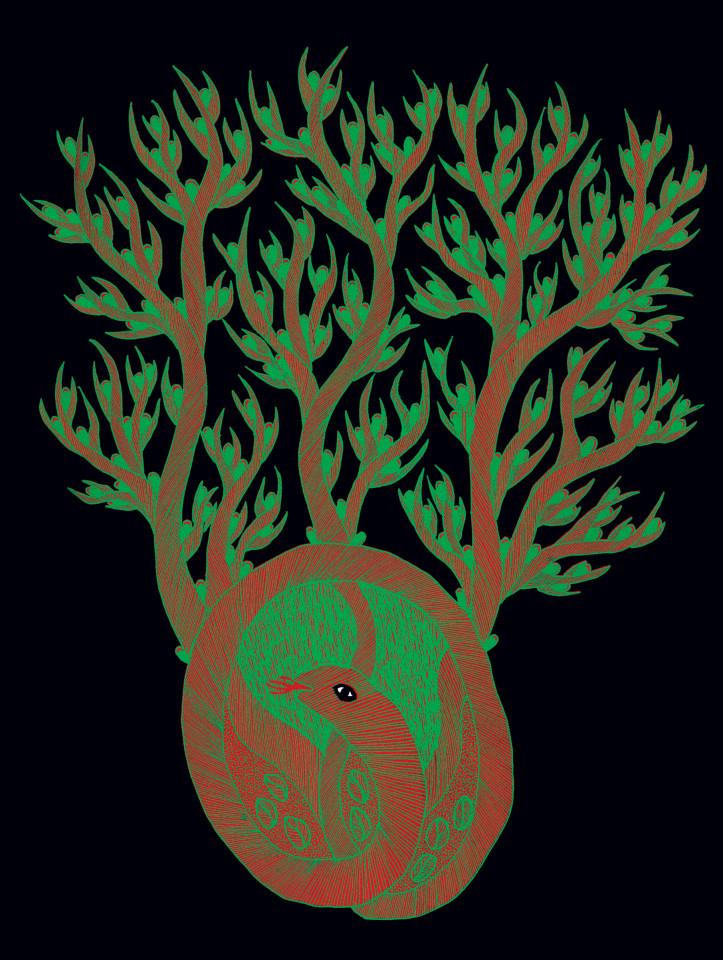 Nocne życie Drzew Kwartalnik Przekrój
