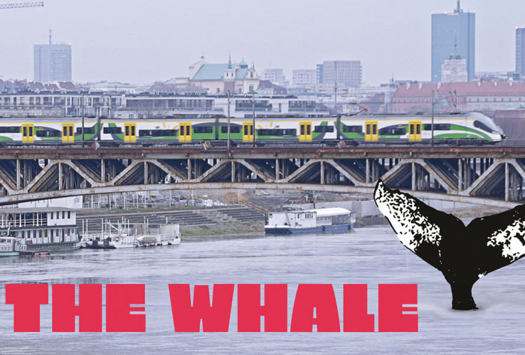 "Watch the Documentary ""The Whale""!"